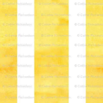White Stripe on Yellow