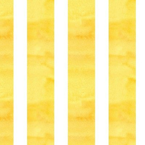 White Stripe on Yellow