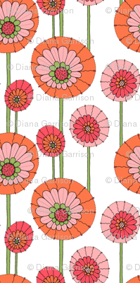 posy pops orange on white