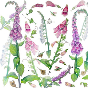 Foxgloves Layered