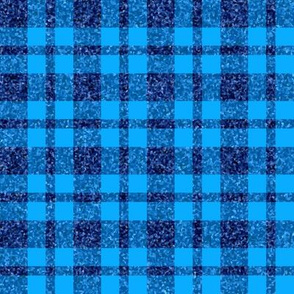 CD29 - Navy Sparkle and Clear Blue Plaid