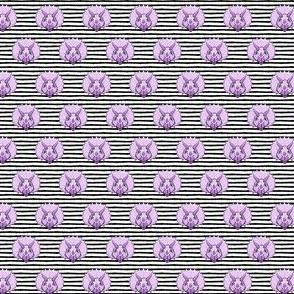 (micro scale) Triceratops - purple on black stripes - dinosuar C18BS