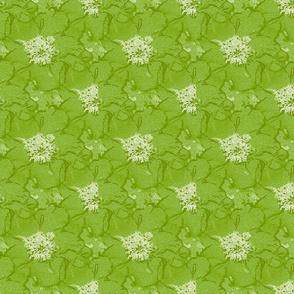 Peony rose lime green