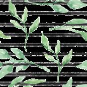 Leaf on Black lines
