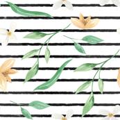 Coffee & White Flowers on Black Stripe