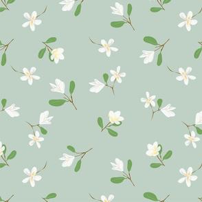 Plumeria floral pattern