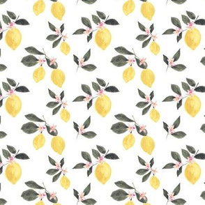 Make lemonade small