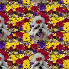 Seamless Shihtzu and flowers
