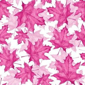 Pink maple leaves