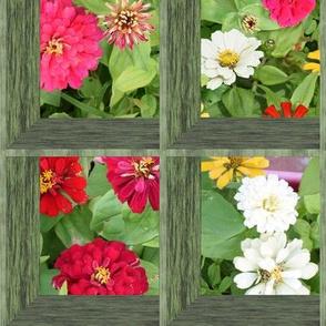 Attic Windows on Zinnia Flowers