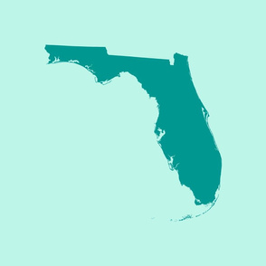 "Florida silhouette - 18"" teal on aqua"