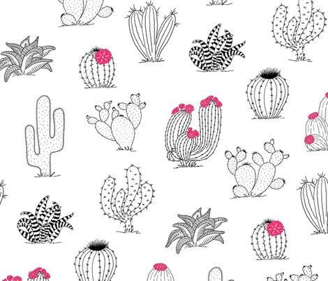 Cactuspattern-20in-150dpi-2_shop_preview