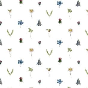 Botanicals on White