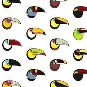 Toucans of the World