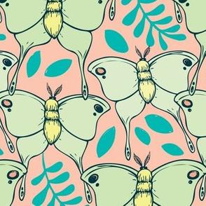 Lovely Luna Moths