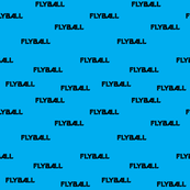 Flyball Text Teal