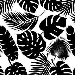 Tropical Leaves - Black on White