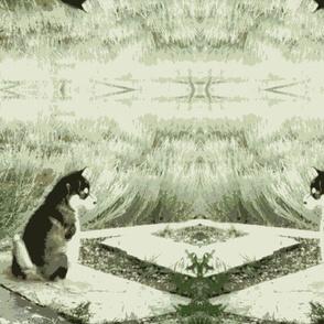 Monochrome Puppy