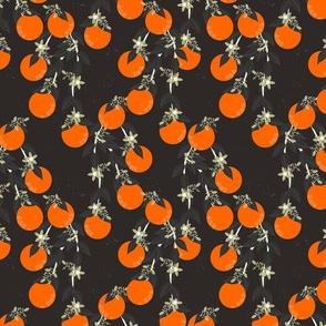 Dark Oranges