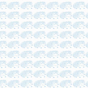 Baby Blue Hedgies