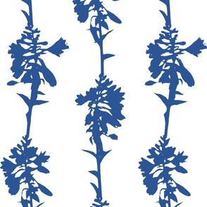 Hosta Stripe in Cobalt and White