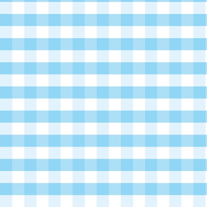 Blue and white plaids