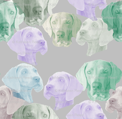 Rfinished-weimaraner-stencil_preview