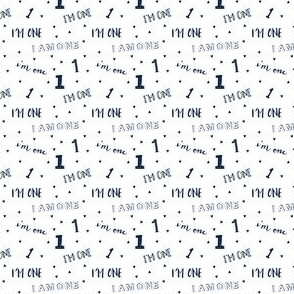 (micro scale) I'm one // first birthday (navy) C18BS