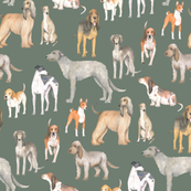 Hound dogs on dark green
