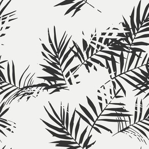 palm black and white small