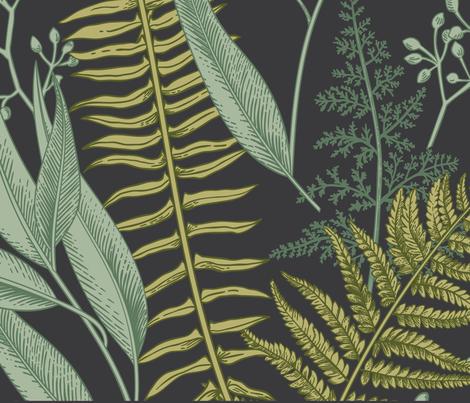 Ferns2-01 fabric by liagriffith on Spoonflower - custom fabric