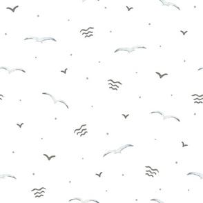 Seagulls (on white)