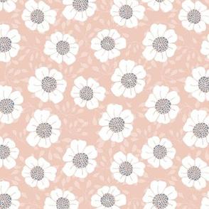 Pink daisy field