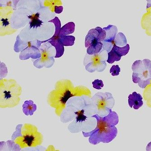 Watercolor Pansies