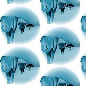 Sunset, Elephant blue