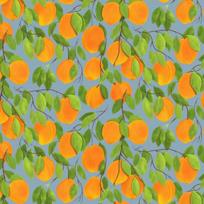 Peaches on Grey background