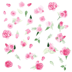 roses flowers - pink watercolors