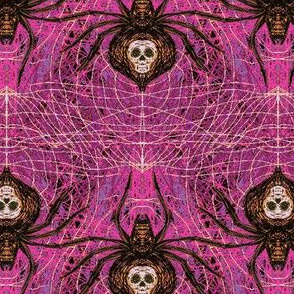 Spider Venom-Pr