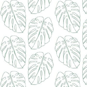 monstera leaf outline