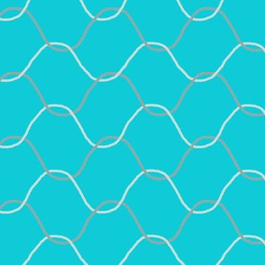 Chickenwire on Turquoise