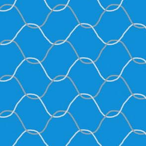 Chickenwire on Sky Blue