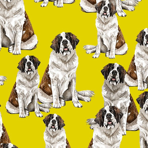 Saint Bernard on Yellow