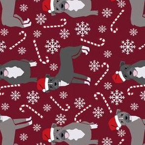 RAILROAD -  Pitbull peppermint stick winter candy cane christmas fabric maroon