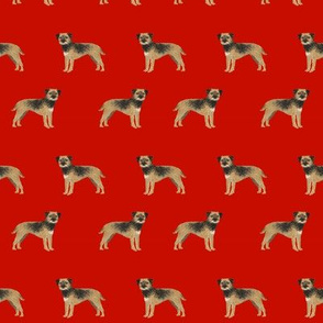 border terrier dog fabric - cute dogs on red background