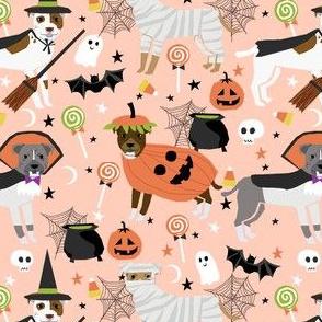 pitbull halloween costume dog fabric - cute dogs in costume halloween design candy corn, candy, funny pet fabric- orange