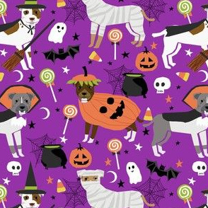 pitbull halloween costume dog fabric - cute dogs in costume halloween design candy corn, candy, funny pet fabric- purple