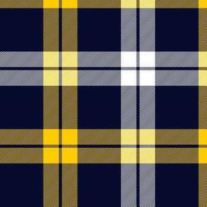 "Campbell of Loch Awe tartan, yellow-navy variant, 6"""