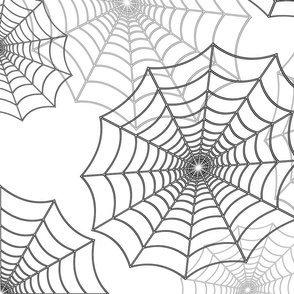 Black Spider Web Cobweb Silk Pattern on Dark White