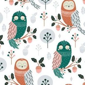 Owl Barn