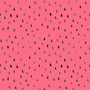 Watermelon seed watercolour